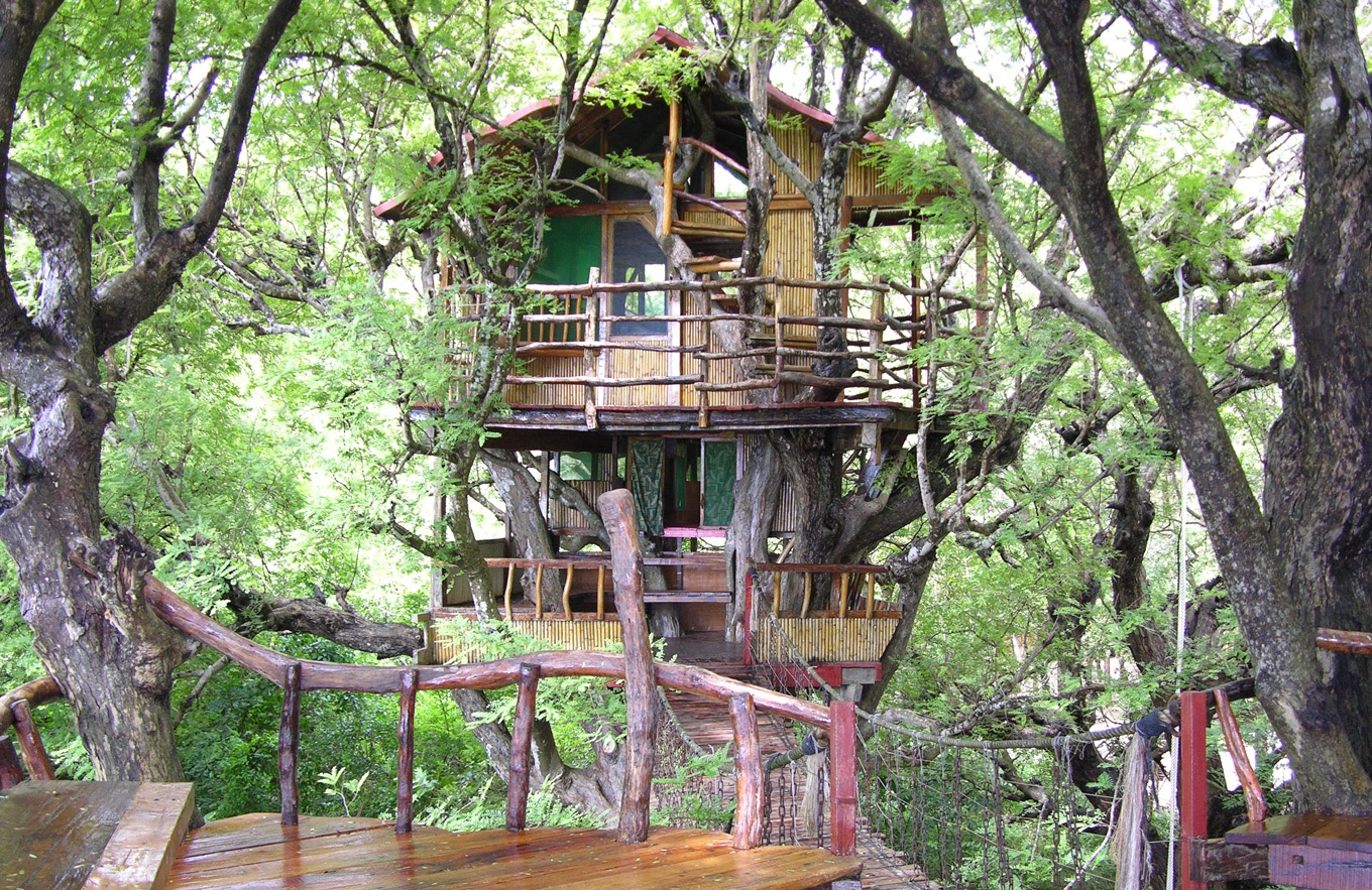 Top 15 Worlds Most Amazing Treehouses KHBUZZ