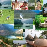 All you Need to Know about Northeast India Travel: Your Travel Guide to Northeast India