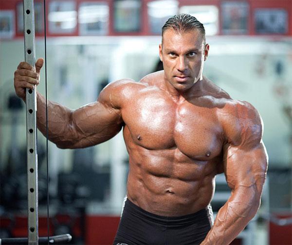 Qualitative Anadrol Reviews by Male Bodybuilders